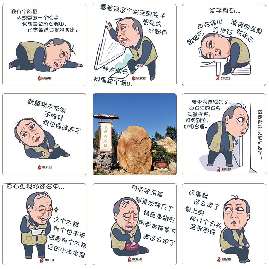 苏大强庭院假山石.jpg