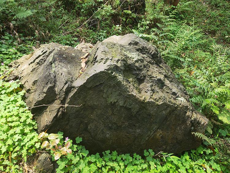 野山石 (31).jpg